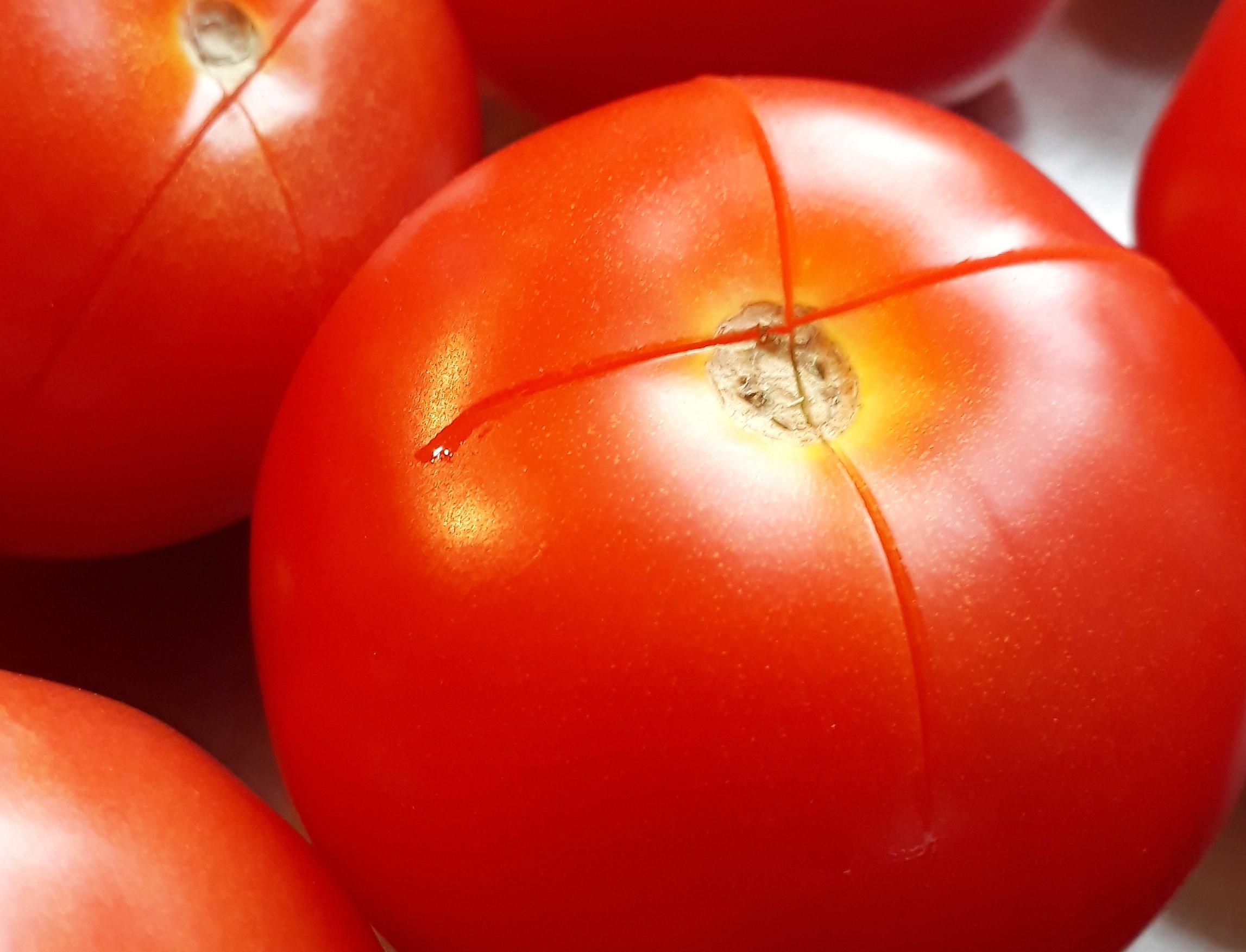 Tomaten met een kruisje